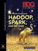 The Future of Big Data: Hadoop, Spark and Beyond