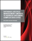 DATABASE LIFECYCLE MANAGEMENT EMERGES TO ADDRESS EVER-MORE COMPLEX DATA SITES