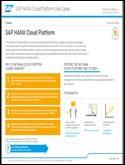 SAP HANA Cloud Platform Customer Use Case Map