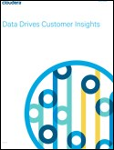 Data Drives Customer Insights