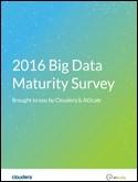 Big Data Maturity Survey, 2016