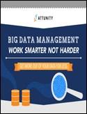 BIG DATA MANAGEMENT WORK SMARTER NOT HARDER