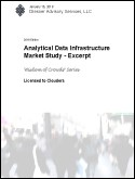 Analytical Data Infrastructure Market Study - Excerpt