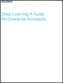 Deep Learning: A Guide for Enterprise Architects