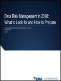 Data Risk Management in 2018: What to Look for and How to Prepare
