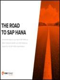 THE ROAD TO SAP HANA