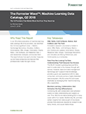 The Forrester Wave™: Machine Learning Data Catalogs, Q2 2018
