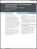 The Forrester Wave™: Cloud Hadoop/Spark Platforms, Q1 2019