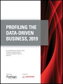 PROFILING THE DATA-DRIVEN BUSINESS, 2019