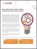 Sync All of Your Agile Gears and Achieve Enterprise Business Agility
