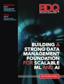 Building a Strong Data Management Foundation for Scalable ML and AI